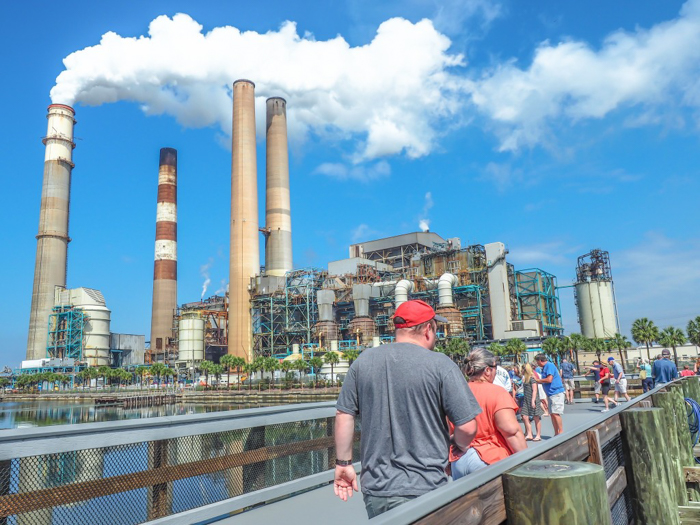 Tampa's Manatee Viewing Center | Apollo Beach, Tampa, Florida | Tampa Electric Company | TECO | Florida Manatees | Florida wildlife | Free things to do in Tampa | What to do in Tampa | Fun things to do in Tampa | viewing platform