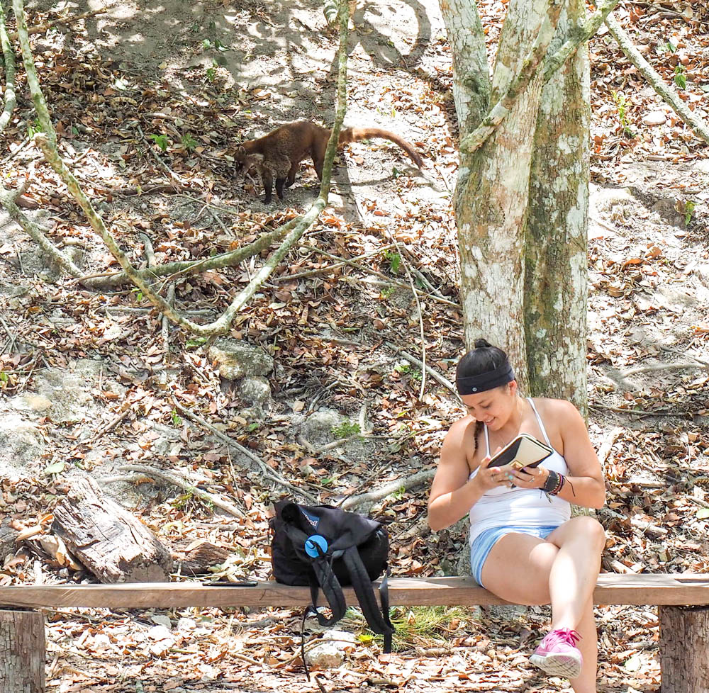 brown animal sneaking up behind woman on a bench in the jungle