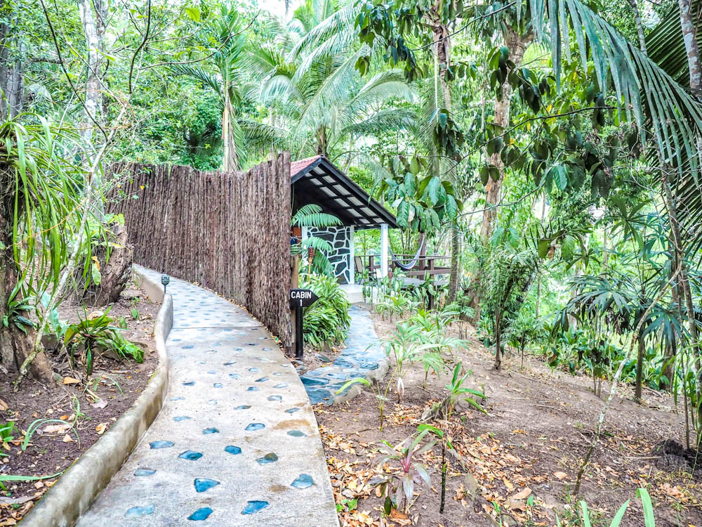 small cabin hidden away in the jungle at black rock lodge in belize