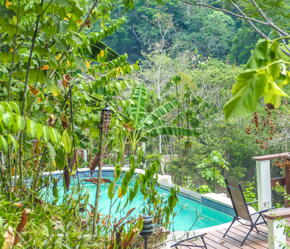 pool in the jungle at black rock lodge in belize