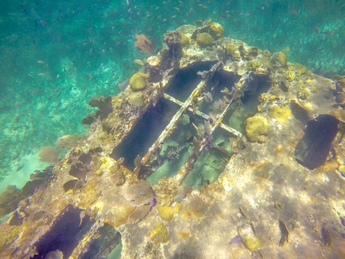sunken barge covered in sealife | Caye Caulker snorkeling with Caveman Snorkeling Tours