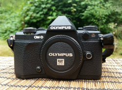 The Olympus OM-D E-M5 Mark II is the best mirrorless camera and perfect for travel.