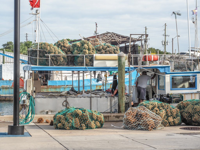 Greeking out at the Tarpon Springs Sponge Docks | What to do in the Tampa Bay area | Greek community | Greek food | Sponge capital of the world | so many sponges
