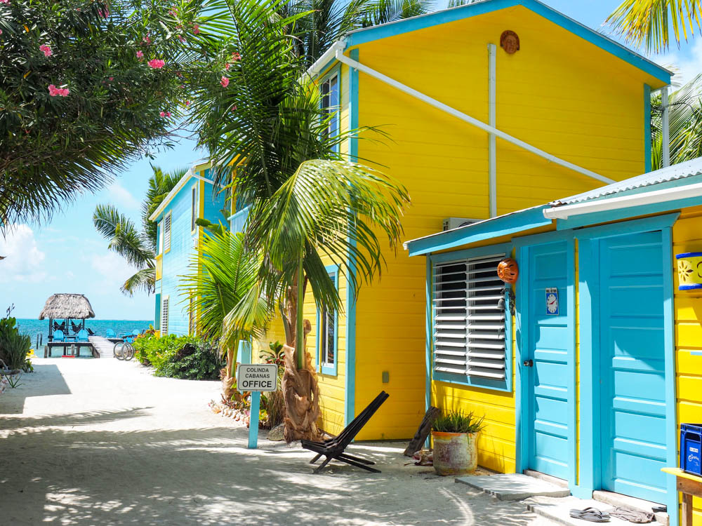 yellow and teal beach cabana under palm trees in belize