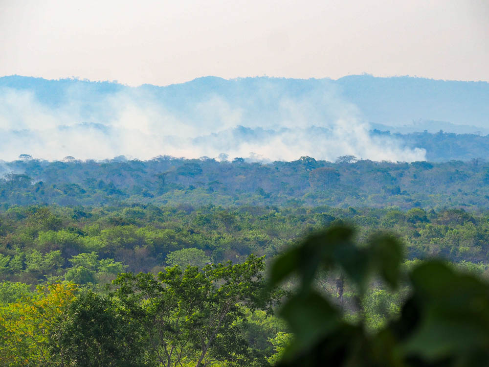 lots of smoke coming from the jungle seen from above