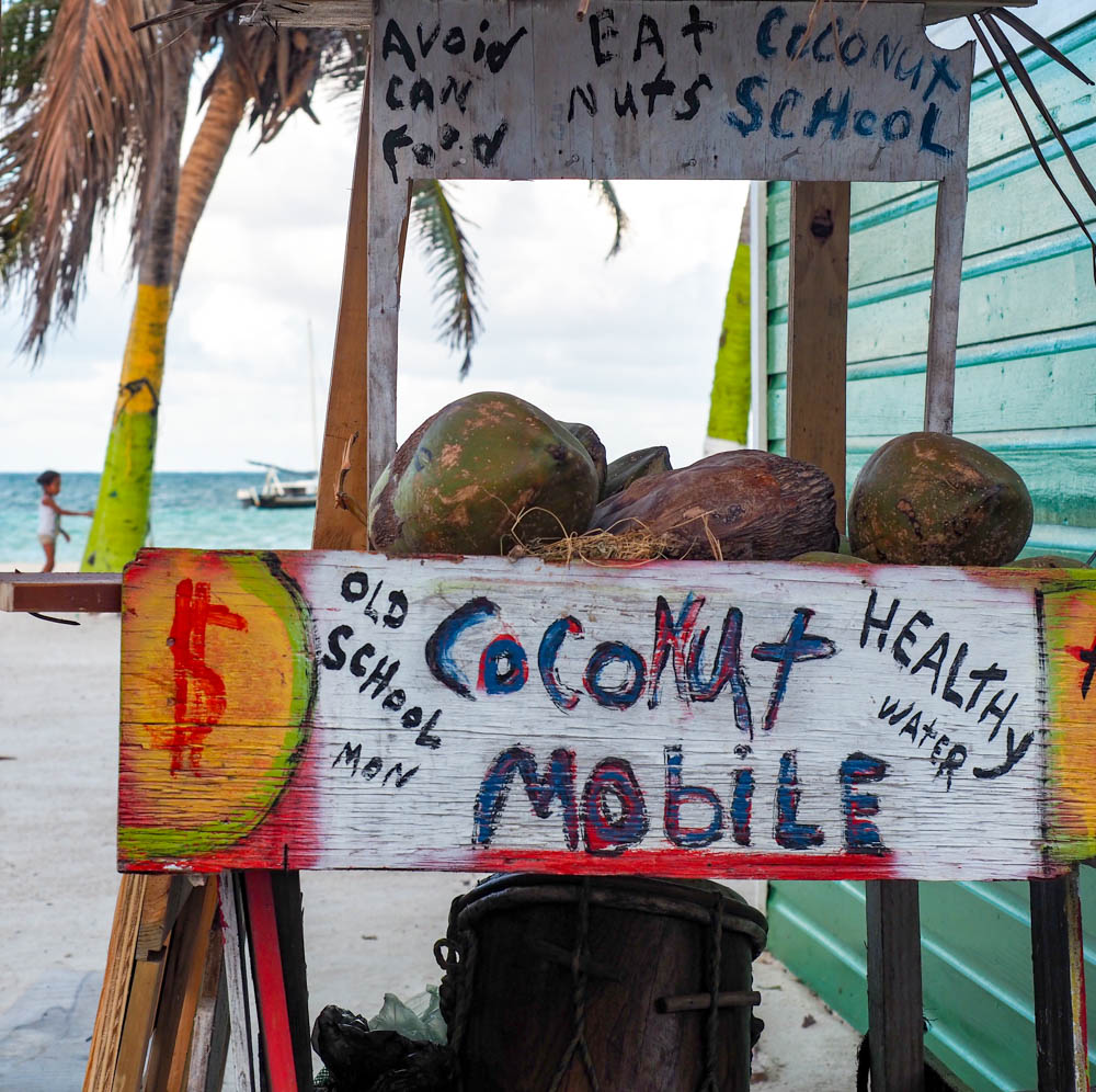 coconut mobile things to do in caye caulker belize