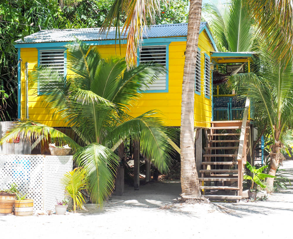 yellow and teal beach cabana surrounded by palm trees