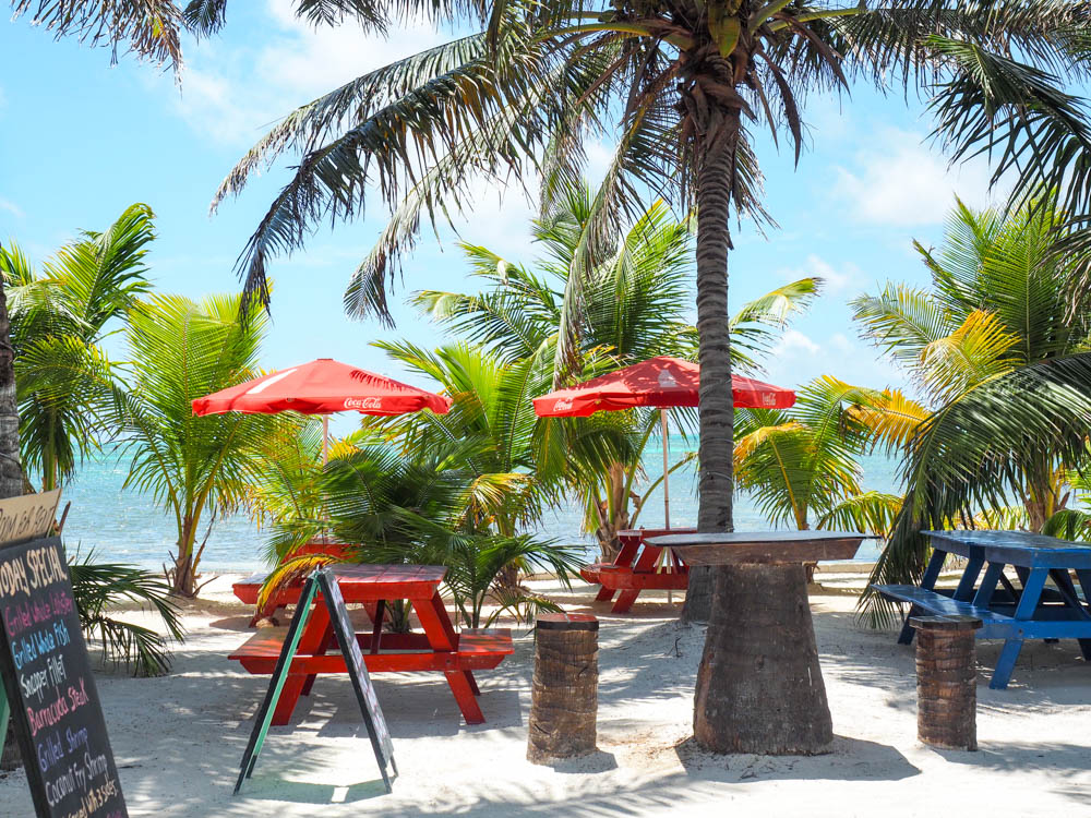 red picnic tables next to the ocean under palm trees