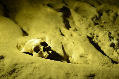 Ancient skeleton / Touring the ATM Cave in Belize: Tips, Advice, Expectations, and more