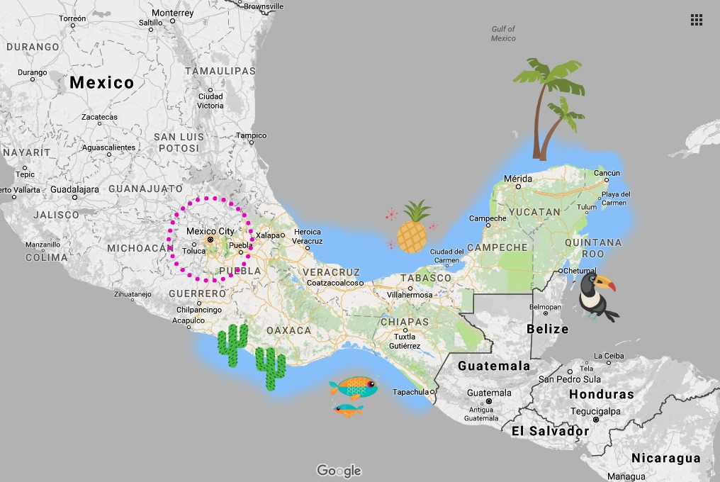 Making sense of Mexico's ADO bus system | Platino vs GL vs OCC, etc. | Where are the bus stations? Mexico DF TAPO | CDMX | bus travel in Mexico | ADO service area map