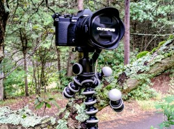 what to pack | joby gorillapod tripod, photography gear for travelers