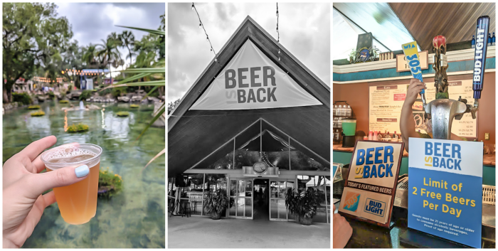 Free Beer summers at Busch Gardens Tampa. How to use the Tampa Bay CityPASS as a childless adult. Includes admission to Busch Gardens, Zoo Tampa at Lowry Park, Chihuly Museum, Clearwater Marine Aquarium, and the Florida Aquarium #tampabay #florida #citypass #traveltips #vacation #rollercoaster #tampa #timebudgettravel #beer