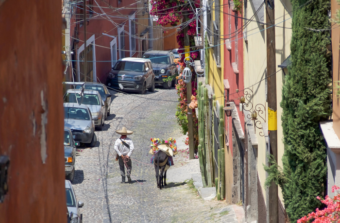 2 days in San Miguel de Allende travel tips   Cowboy and donkey #sanmigueldeallende #mexico #traveltips #timebudgettravel #sanmiguel #donkey