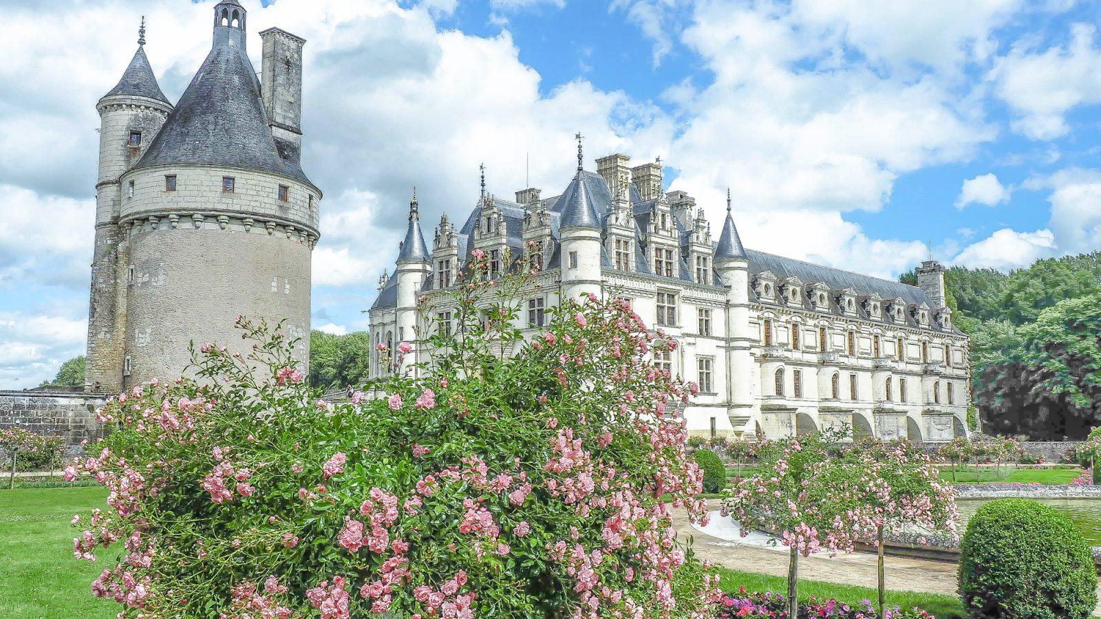 7 France-tastic Things to Do in the Loire Valley   wine tasting, chateaux and castles, Leonardo da Vinci, Chartres, day trips, troglodyte caves, and more #france #loirevalley #traveltips #daytrips #paris #castles #winetasting