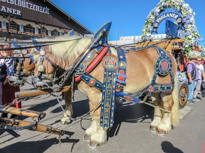 An Oktoberfest Tour Guide's Most Frequently Asked Oktoberfest Questions | Need to know Oktoberfest in Munich, Germany #oktoberfest #munich #germany #beer #festival | #horse carriages