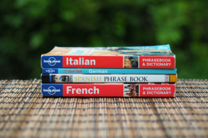 what to pack for travel | packing and gear, recommended books for travelers, pocket language guides