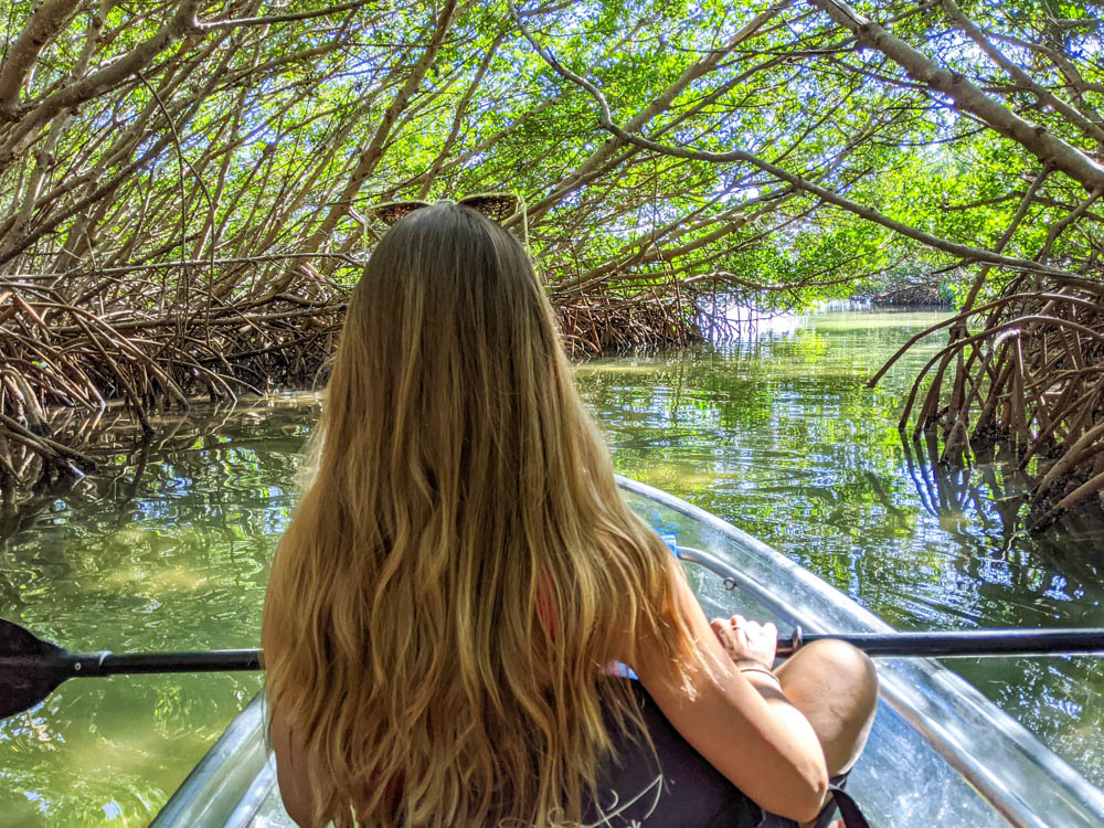 3 days in Sarasota, Florida / What to do in Sarasota, Where to eat in Sarasota, itinerary and information guide, kayaking through mangrove tunnels
