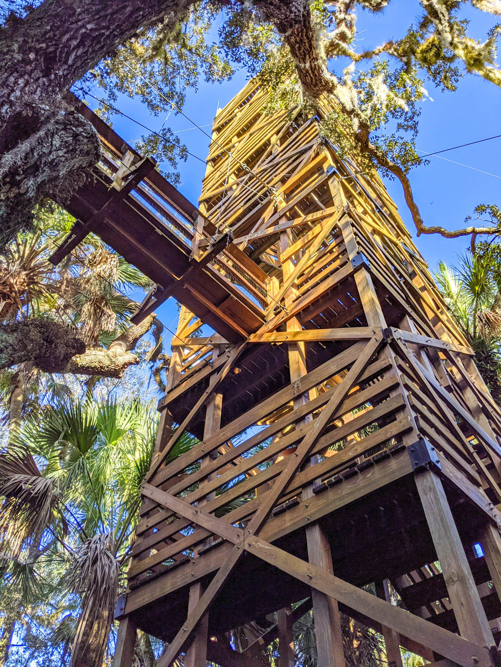 Myakka Canopy Walkway and Observation Tower / 3 days in Sarasota, Florida / What to do in Sarasota, Where to eat in Sarasota, itinerary and information guide