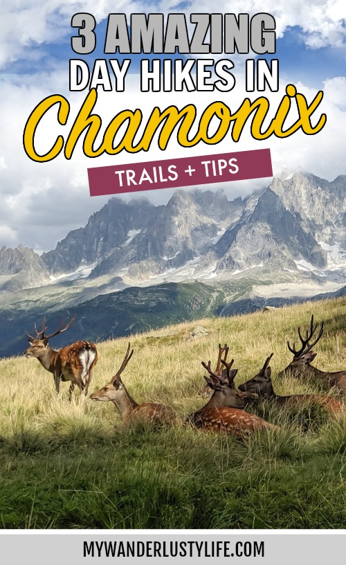 Best hikes in Chamonix, France / Amazing day hikes in and around Chamonix and the Tour du Mont Blanc / Le Brevent, Plan Praz, Merlet Animal Park, Bossons Glacier, Plan de l'Aiguille, Aiguille du Midi, Mer de Glace, and more! #chamonix #hiking #nature #rewilding #dayhikes #hike #hikingadventures #montblanc #tourdumontblanc #frenchalps #mywanderlustylife