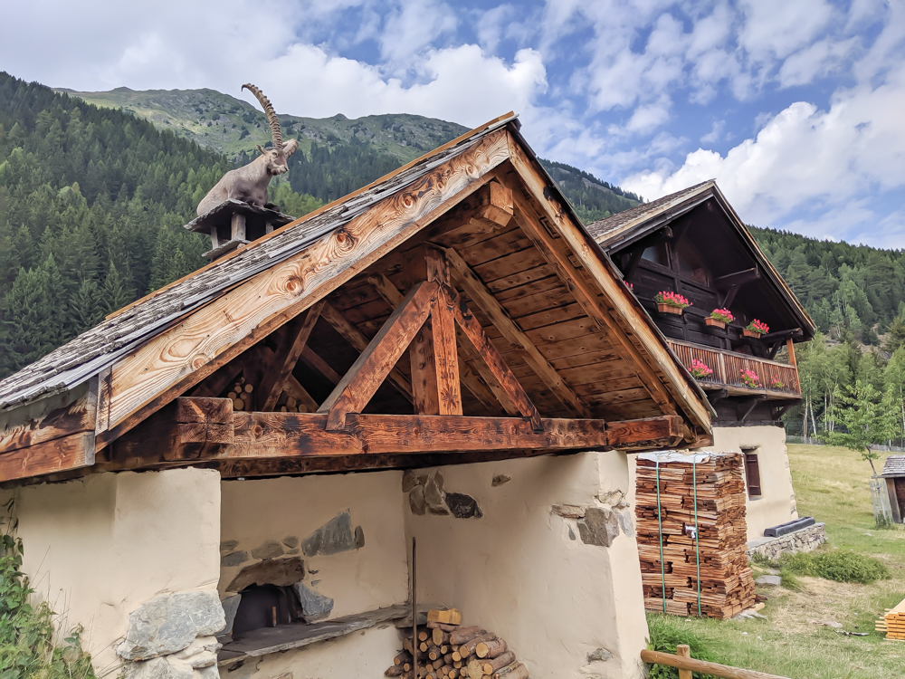 Awesome things to do in Chamonix in the summer: Alpine bucket list / Merlet Animal Park and rooftop ibex