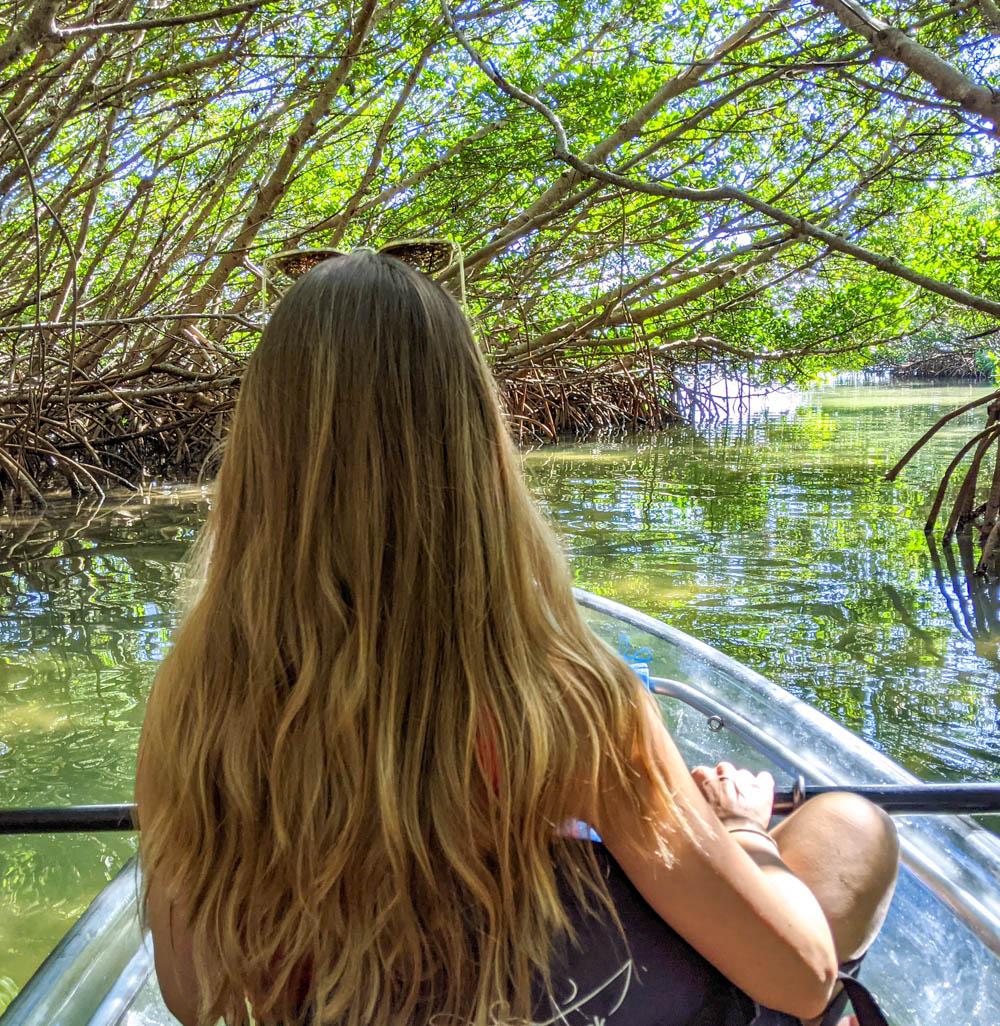girl kayaking through mangrove tunnel in clear kayak
