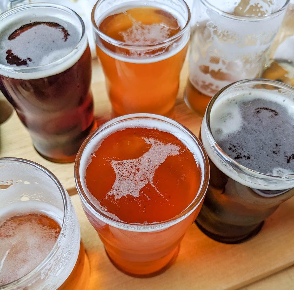 craft beer sampler | Awesome breweries in palm beach county, florida | craft beer and cider in west palm beach