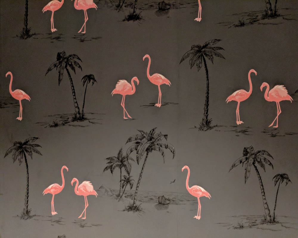 flamingo wallpaper | Awesome breweries in palm beach county, florida | craft beer and cider in west palm beach