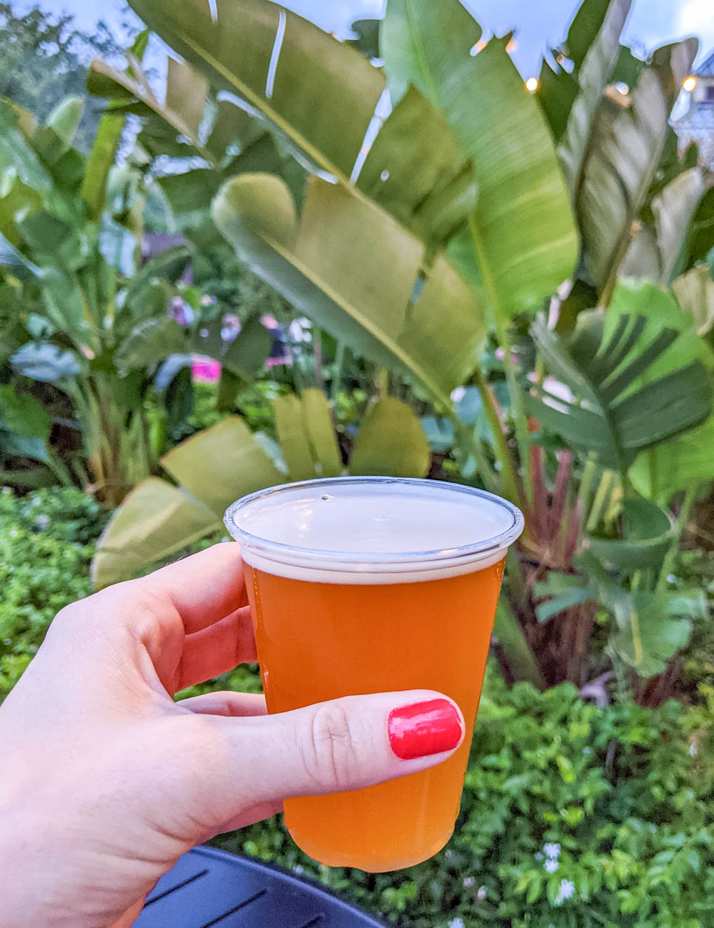 palm trees beer sampler | Awesome breweries in palm beach county, florida | craft beer and cider in west palm beach